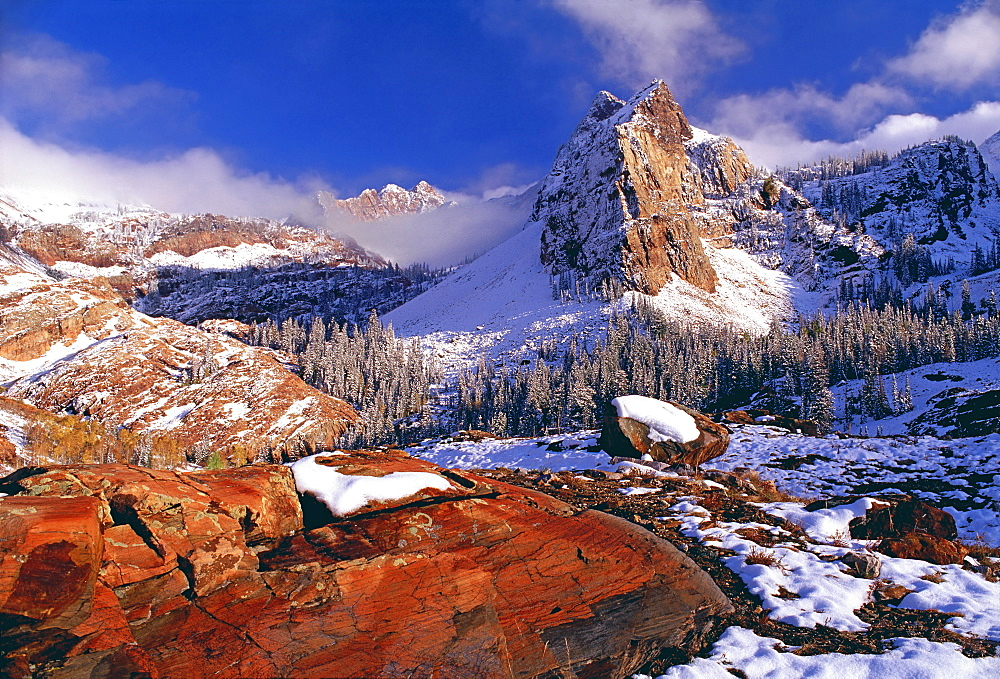 Winter in Cottonwood Canyon in the mountains of the Wasatch Range. Pine forests in snow with low cloud. The Twin Peaks wilderness area, Wasatch Mountains, Utah, USA