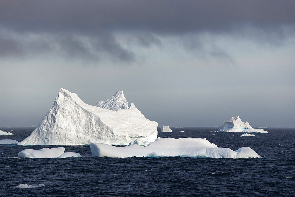 Icebergs on the waters of the Southern Ocean, Icebergs, Antarctica,