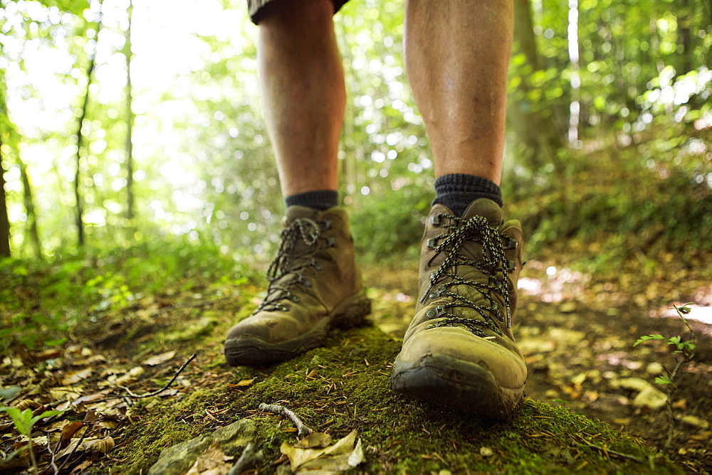 Close up of a man's feet in hiking boots on a woodland path in summer, Gloucestershire, England
