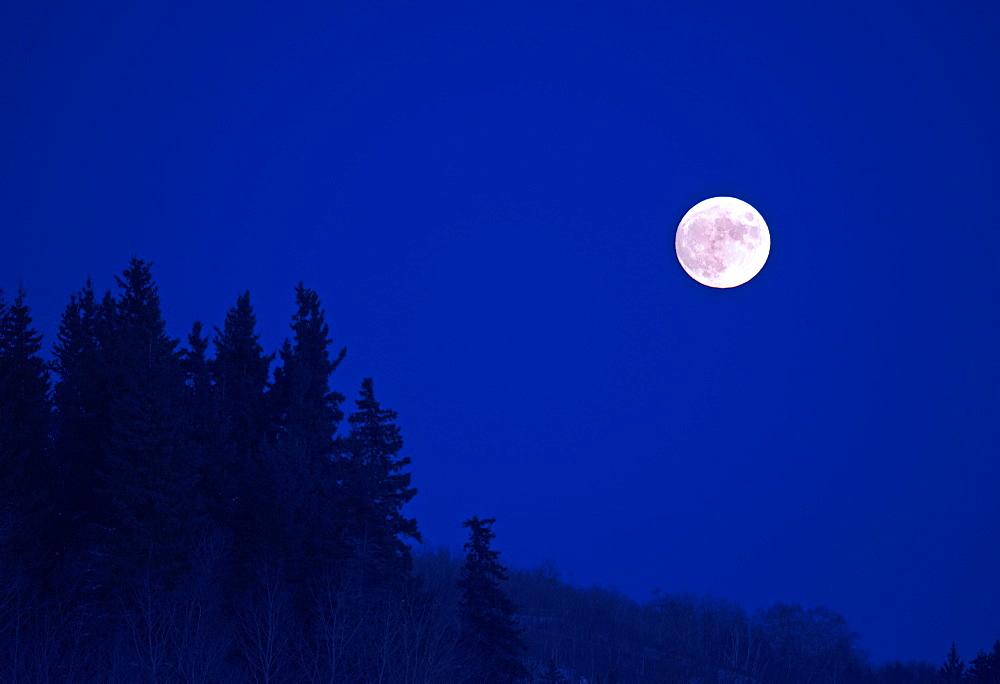 A full moon in a dark blue night sky, Full Moon, Manitoba, Canada