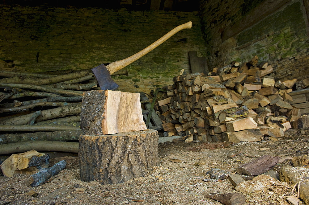 Axe stuck in a piece of wood on top of a chopping block, a pile of logs and chopped woodWood chopping, Gloucestershire, England
