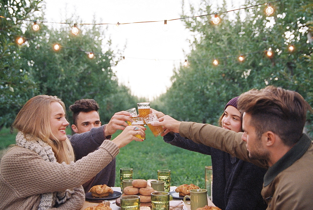 An apple orchard in Utah. Group of people toasting with a glass of cider, food and drink on a table, Sataquin, Utah, United States of America