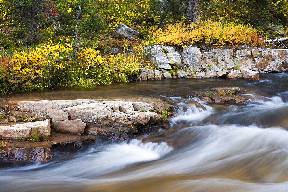 Falls colours and foliage along the Upper Provo River, Uinta Mountains, Utah, USA