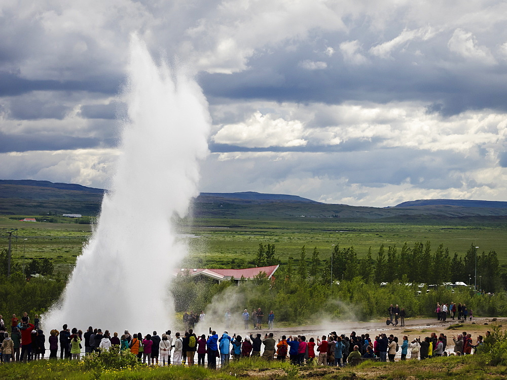 A geysir, a plume of hot steam escaping from the ground at a hot springs area, Iceland