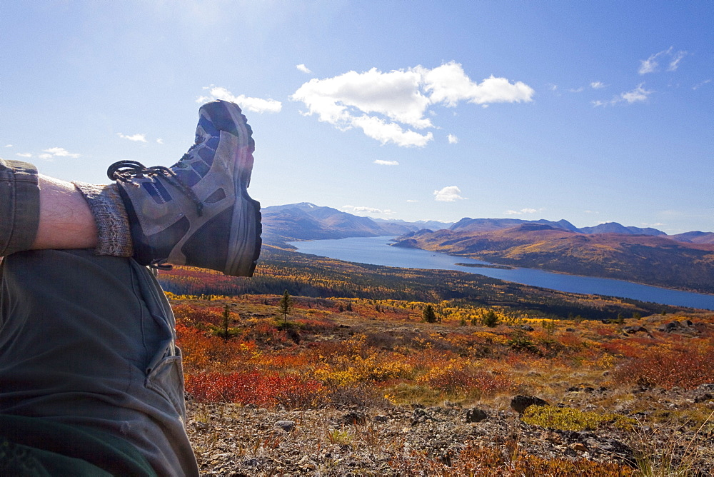 Legs and boots of hiker resting in alpine tundra coloured yellow and red by fall overlooking Fish Lake near Whitehorse, Yukon Territory, Canada.