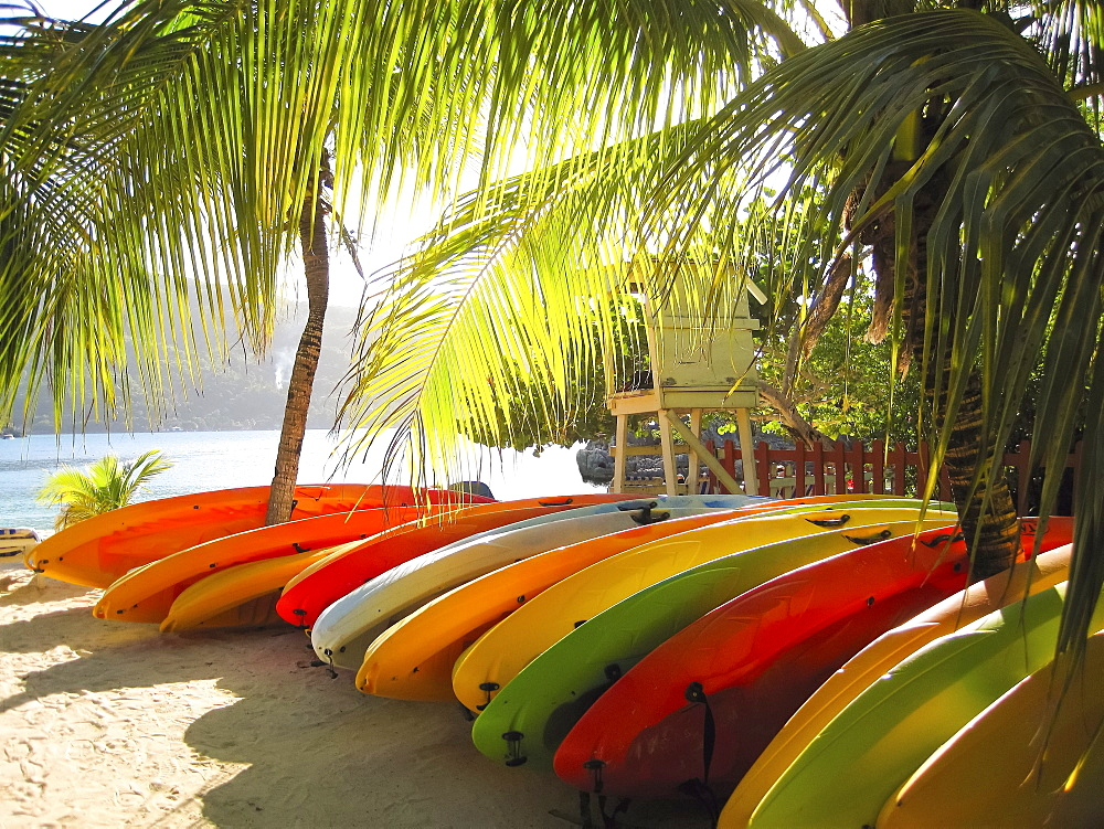Row of colourful kayaks on a sandy beach under palm trees.