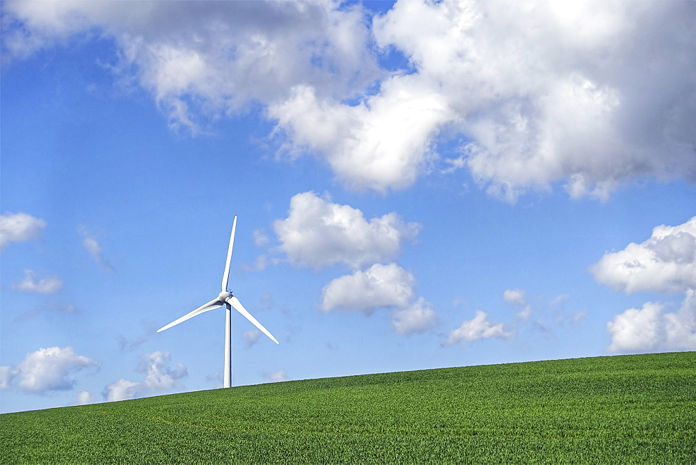 A wind turbine on the brow of a hill under a blue sky with light cloud.  - 1174-4379
