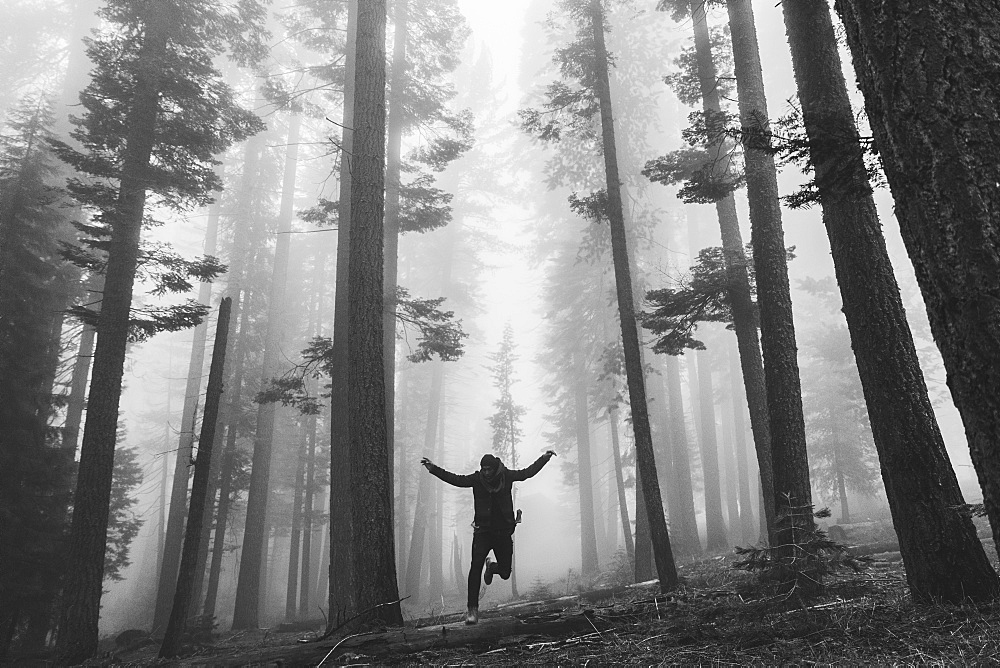 One person jumping in a misty forest. - 1174-4402