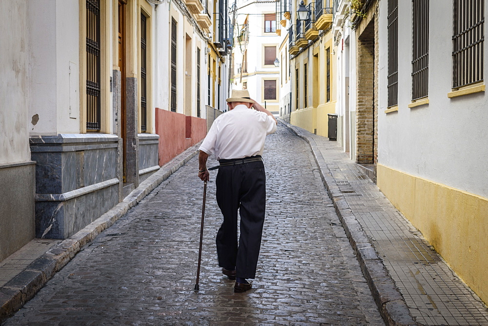 Rear view of elderly man with cane walking along cobbled street in Sevilla, Andalusia, Spain, Seville, Andalusia, Spain