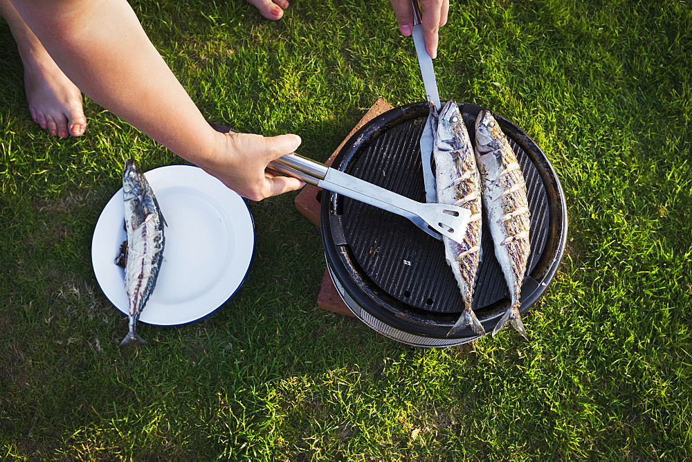 A woman barbecuing two fresh mackerel fish on a small grill, turning the fish, England, United Kingdom - 1174-4550