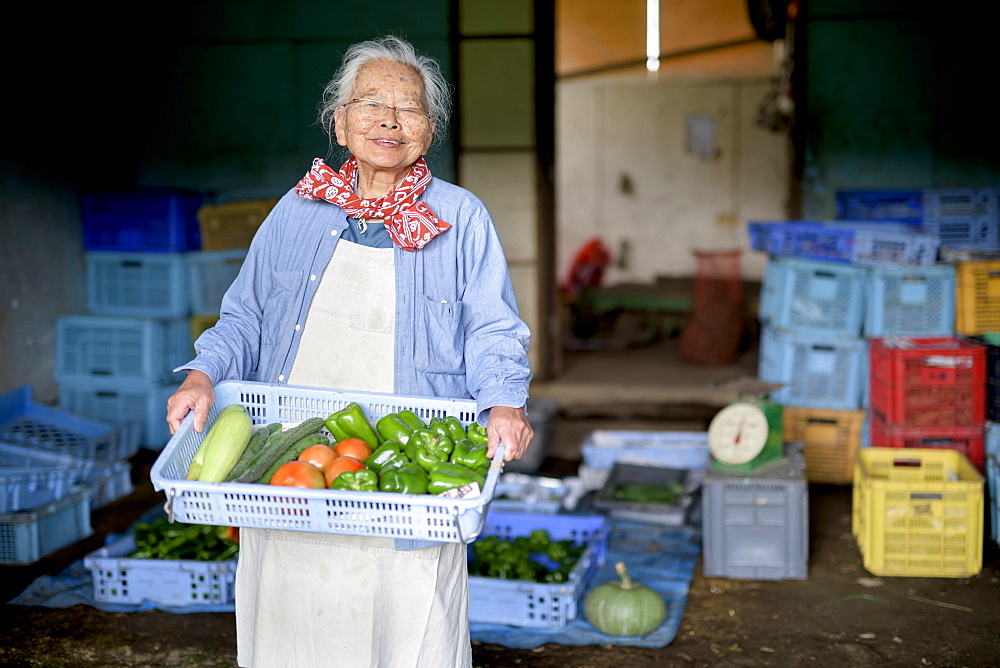 Elderly woman with grey hair standing in front of barn, holding blue plastic crate with fresh vegetables, smiling at camera, Japan - 1174-4757