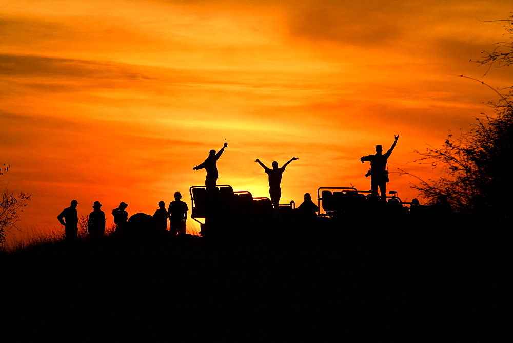 A silhouette of people and a vehicle, people with hands in the air, against sunset, orange and yellow sky, Londolozi Game Reserve, Sabi Sands, Greater Kruger National Park, South Africa