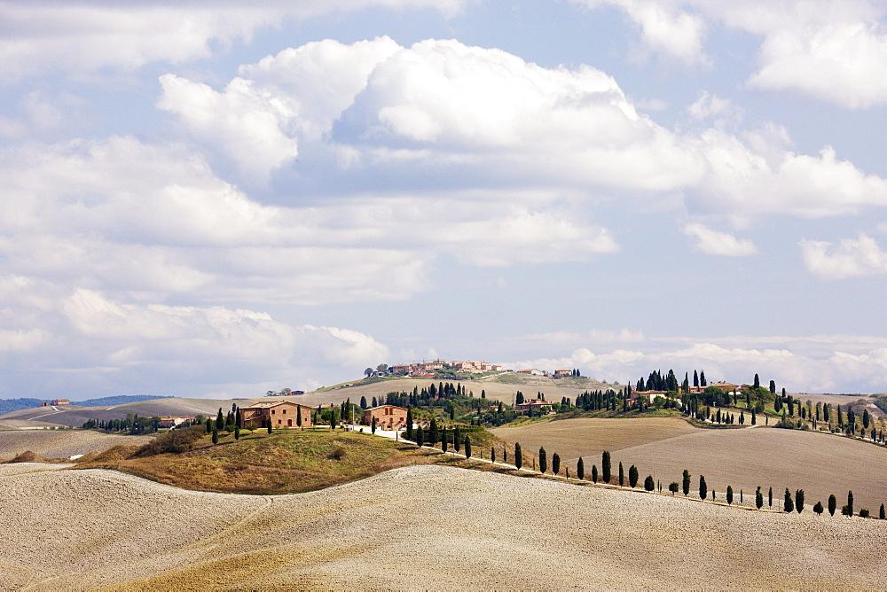 Desert Landscape in La Crete Sinesi, Siena, Tuscany, Italy