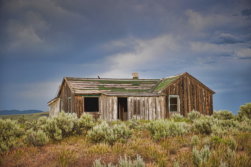 Abandoned Countryside House, Phoenix, Arizona, United States of America
