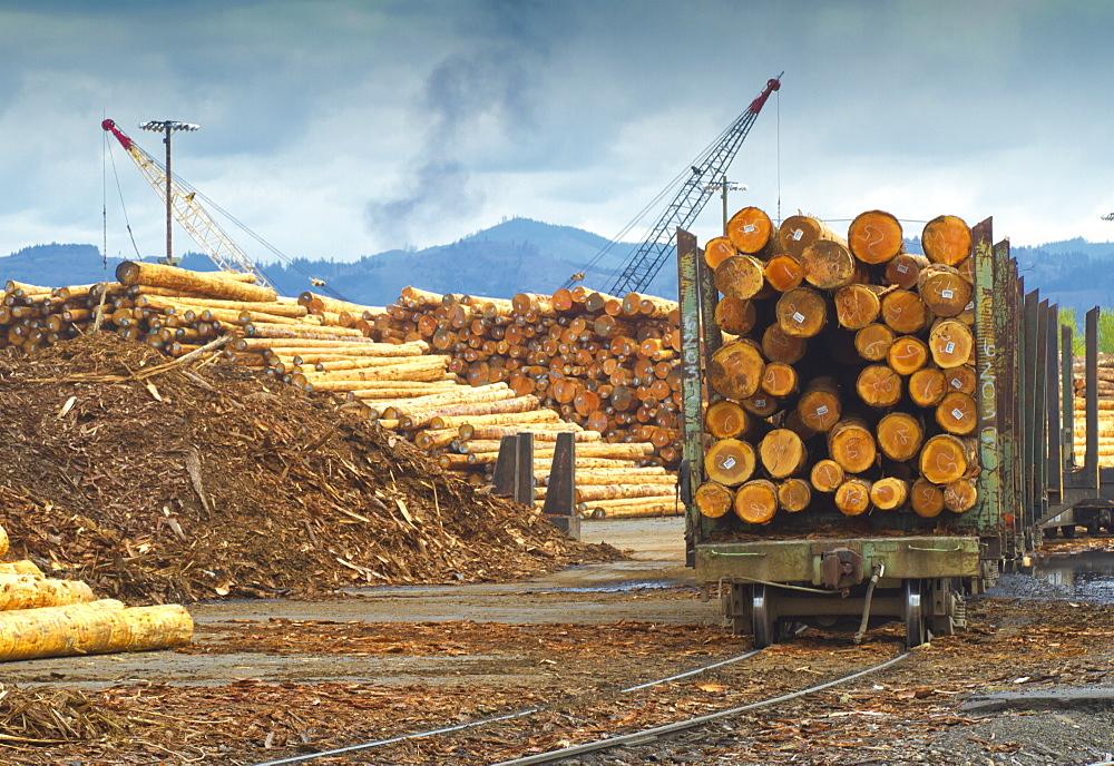 Logs on railroad trailer, Portland, Oregon, United States of America