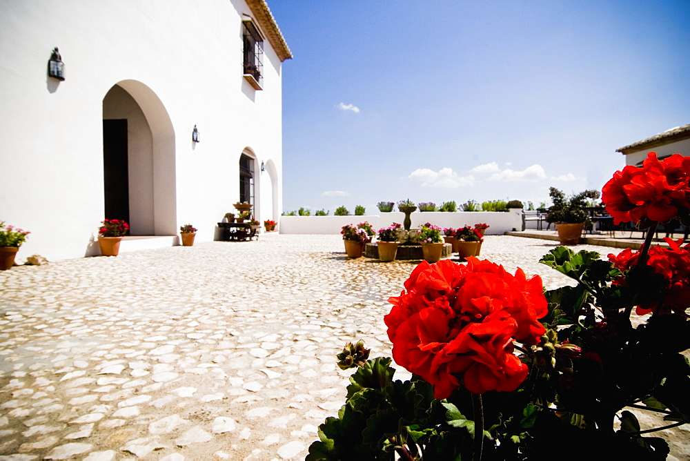 Courtyard of Hotel, Antequera, Andalucia, Spain