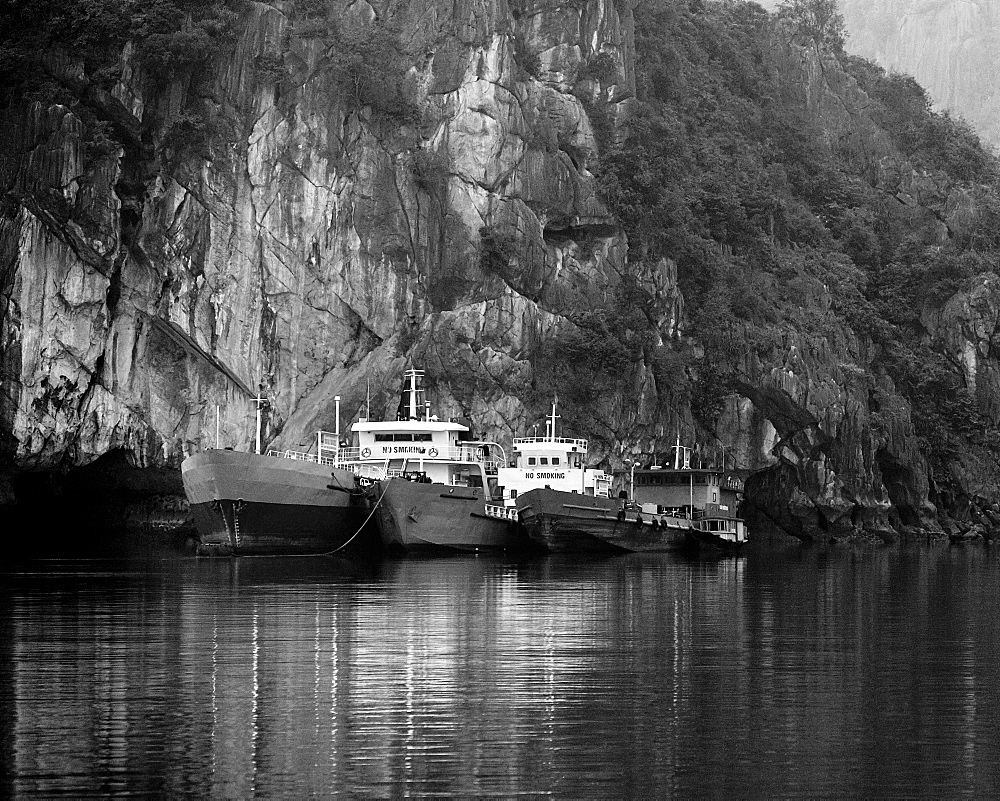 Boats Docked by a Cliff, Halong Bay, Quang Ninh, Vietnam