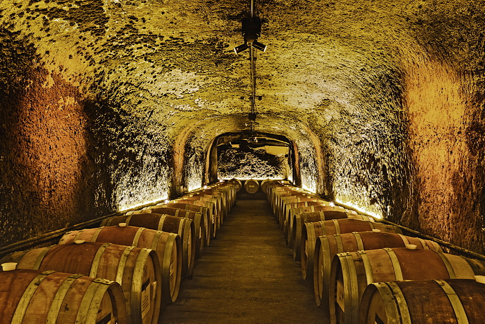 Wine barrels in cave cellar, NAPA, California, USA