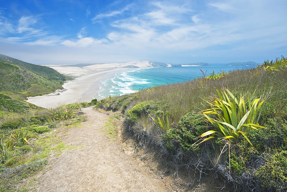 Dirt path on coastal hillside, Te Werahi, Cape Reinga, New Zealand, Te Werahi, Cape Reinga, New Zealand