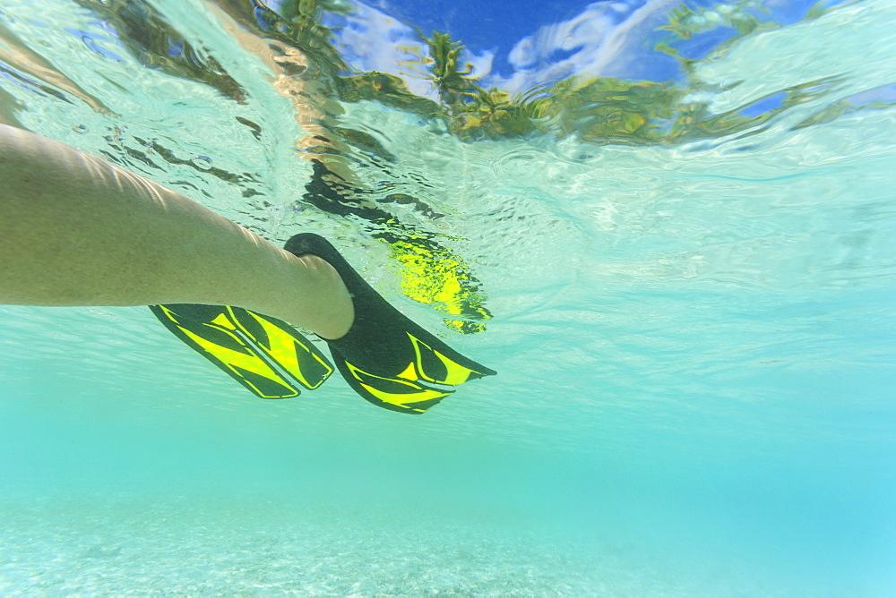 Snorkeling flippers in tropical water, Bora Bora, Bora Bora, French Polynesia