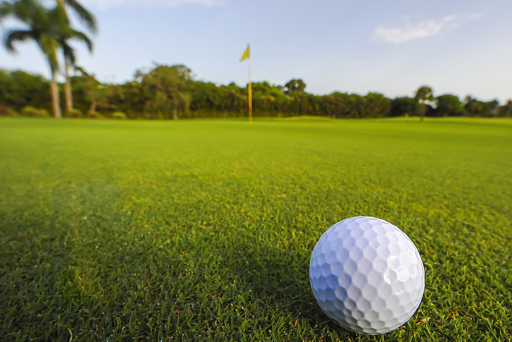 Golf ball rolling on putting green, Palm Beach, Florida, USA