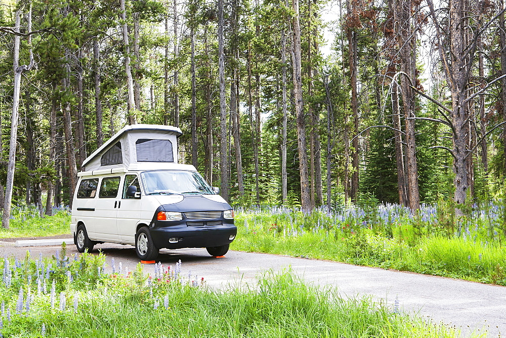 Camper van on rural road, Pioneer Mountains Parkway, Montana, United States