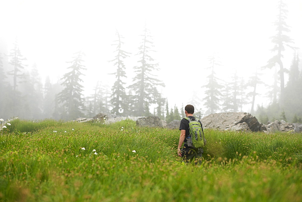 Man hiking in rural field, Leavenworth, Washington, USA