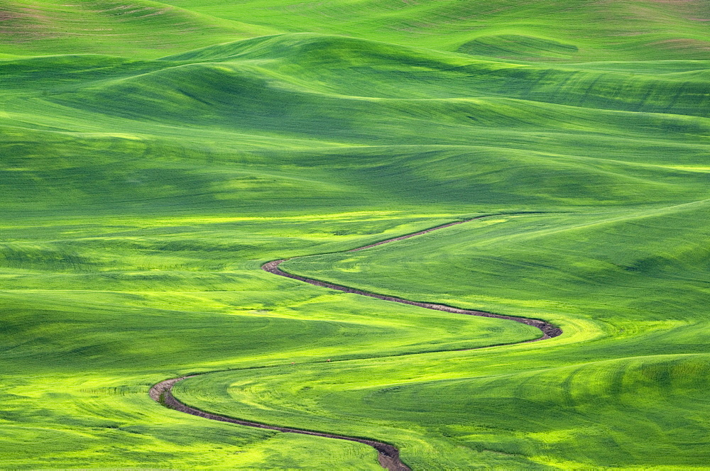 Winding irrigation ditch through rolling hills in rural landscape, Palouse, Washington, USA