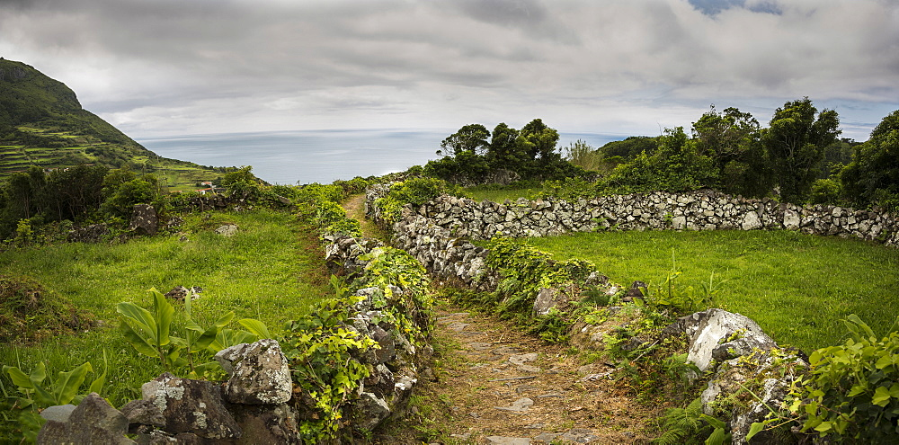 Dirt path through rural fields, Azores Islands, Flores, Portugal