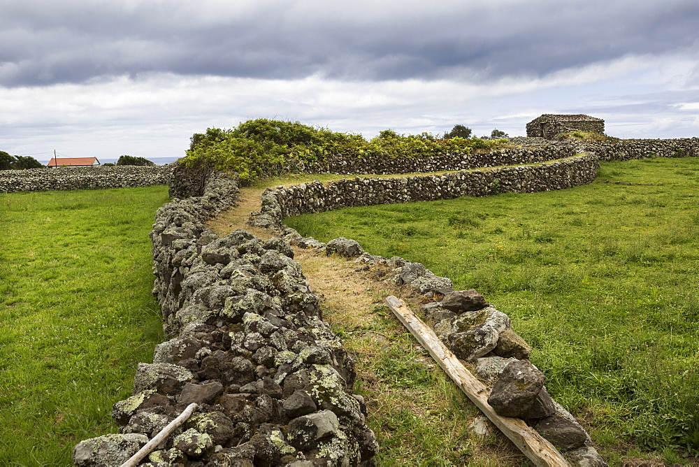 Elevated walkway between rural fields, Azores Islands, Flores, Portugal