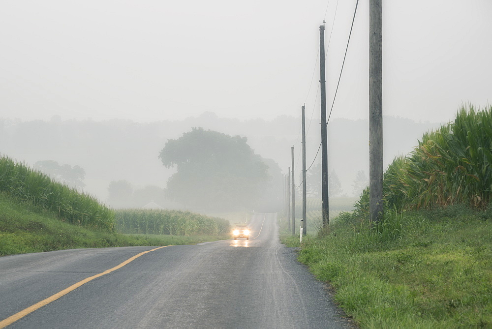 Car approaching on foggy two-lane road, Lancaster, Pennsylvania, USA