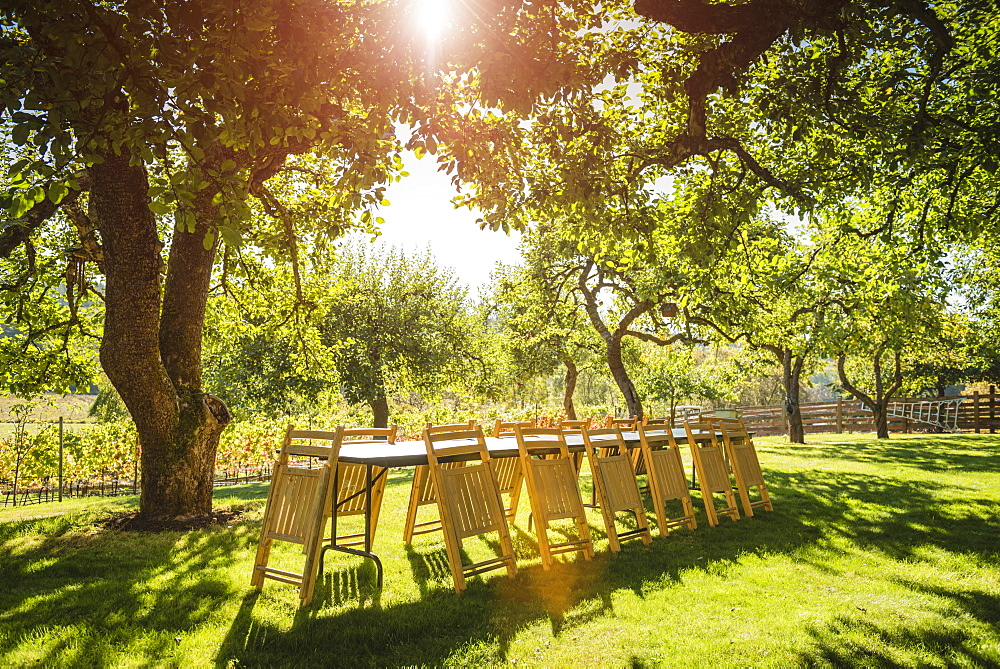 Folded chairs leaning on table in backyard, Langly, Washington, USA