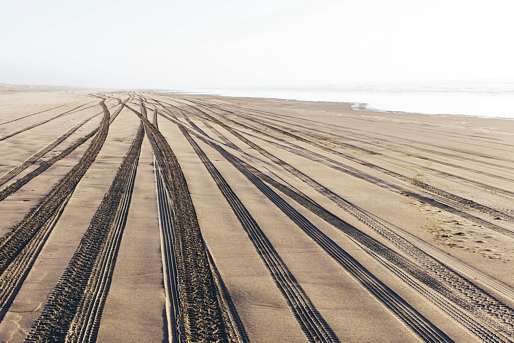 Tire tracks on the soft surface of sand on a beach, Long Beach Peninsula, Washington, United States