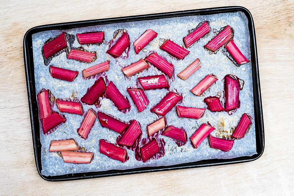High angle close up of slices of rhubarb on a baking tray, Oxfordshire, England