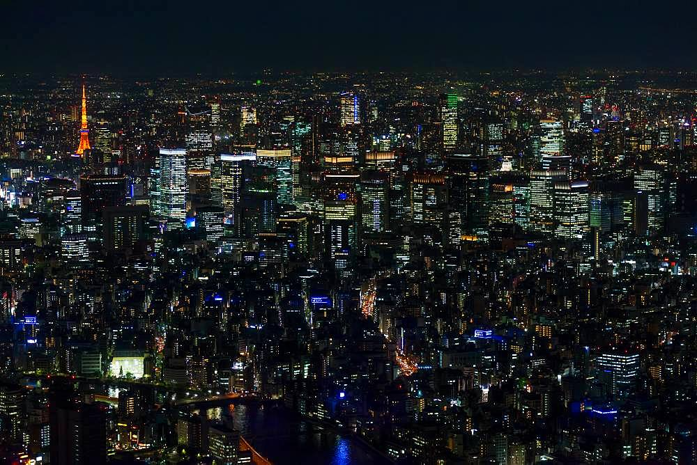 Aerial view of the city skyline at night, Tokyo, Japan