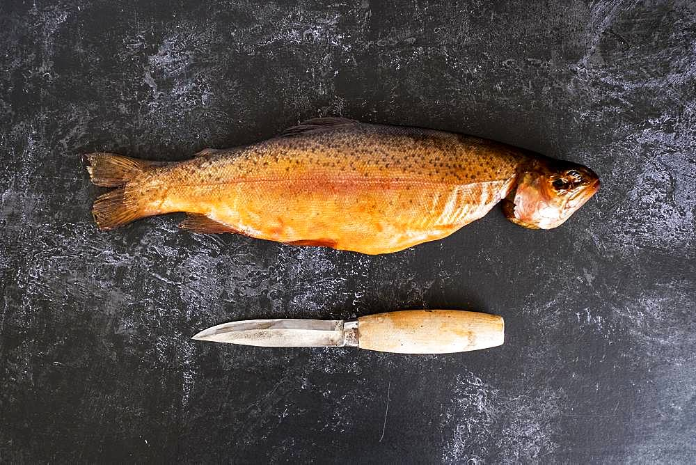 High angle close up of one freshly smoked whole trout and a knife on black slate