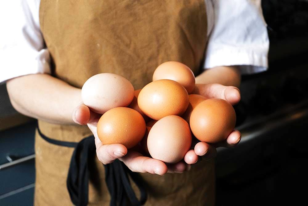 High angle close up of person wearing apron holding fresh brown eggs