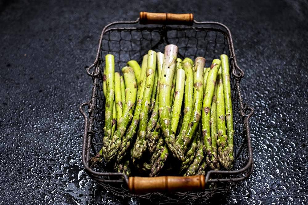 High angle close up of freshly picked green asparagus in metal basket