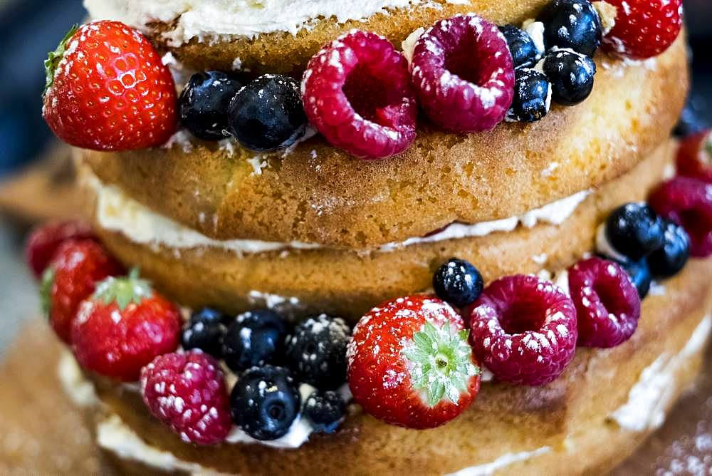 Close up of a freshly baked sponge cake layered with fresh cream and fresh fruit