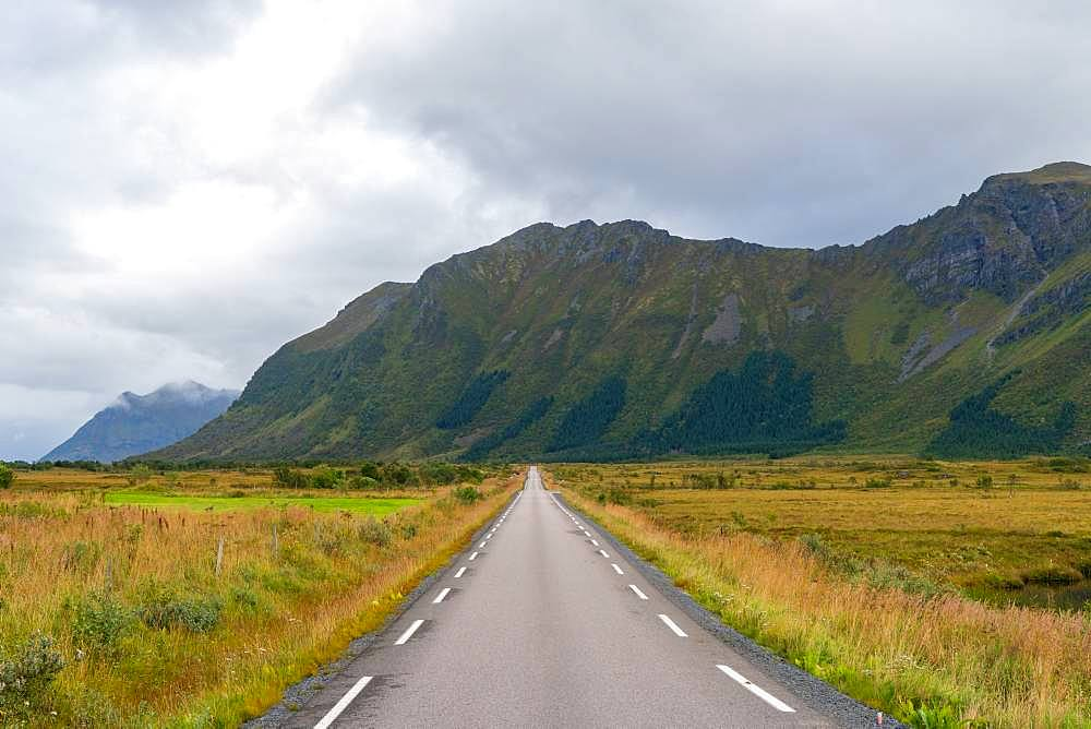 A straight road through the landscape in the Lofoten Islands, Austvagoy, Norway