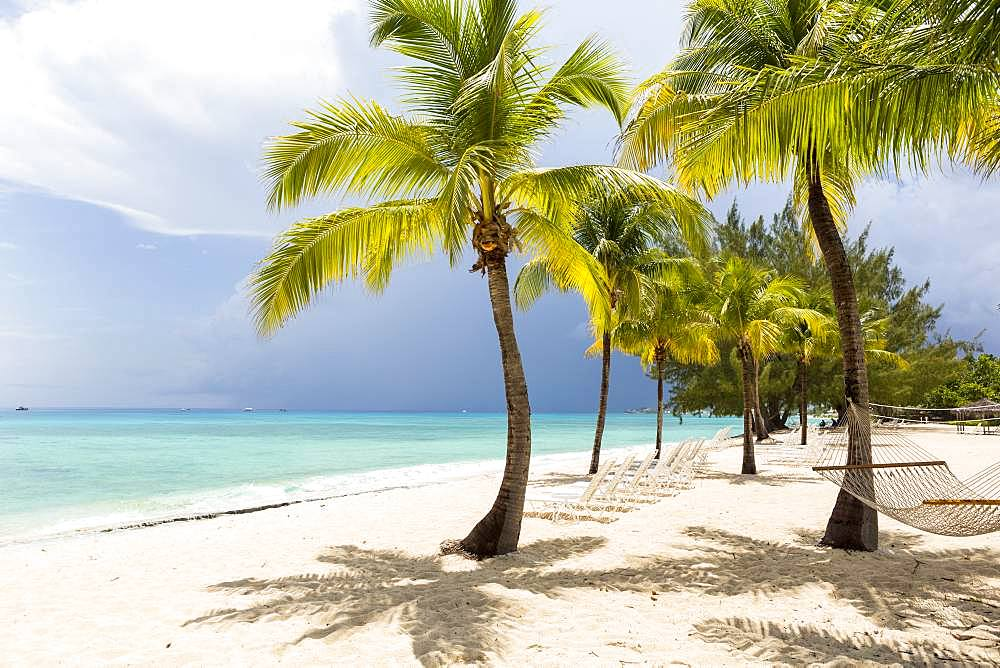 A white sand beach, turquoise sea and palm trees, Grand Cayman, Cayman Islands