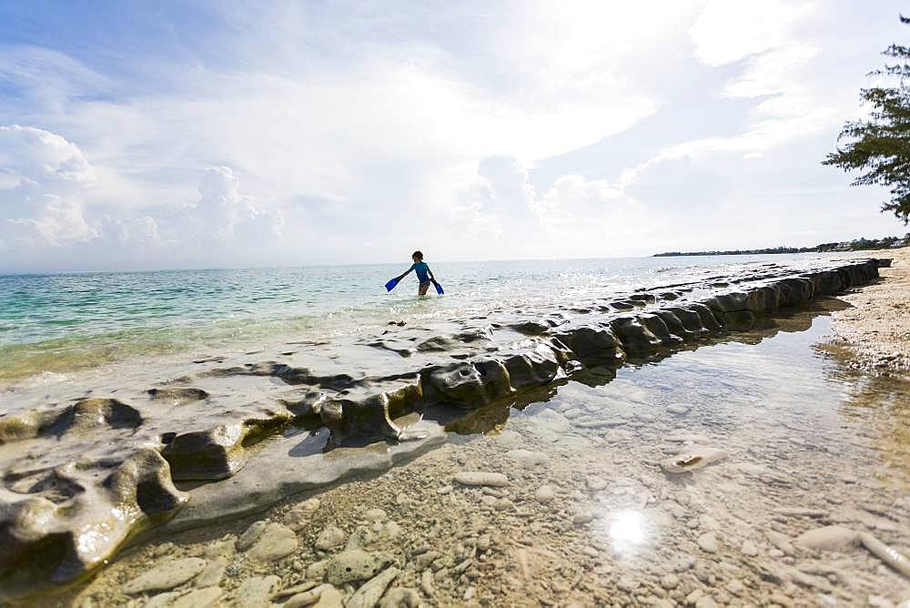 5 year old boy walking on rocks on the shore with swimming fins, Grand Cayman, Cayman Islands