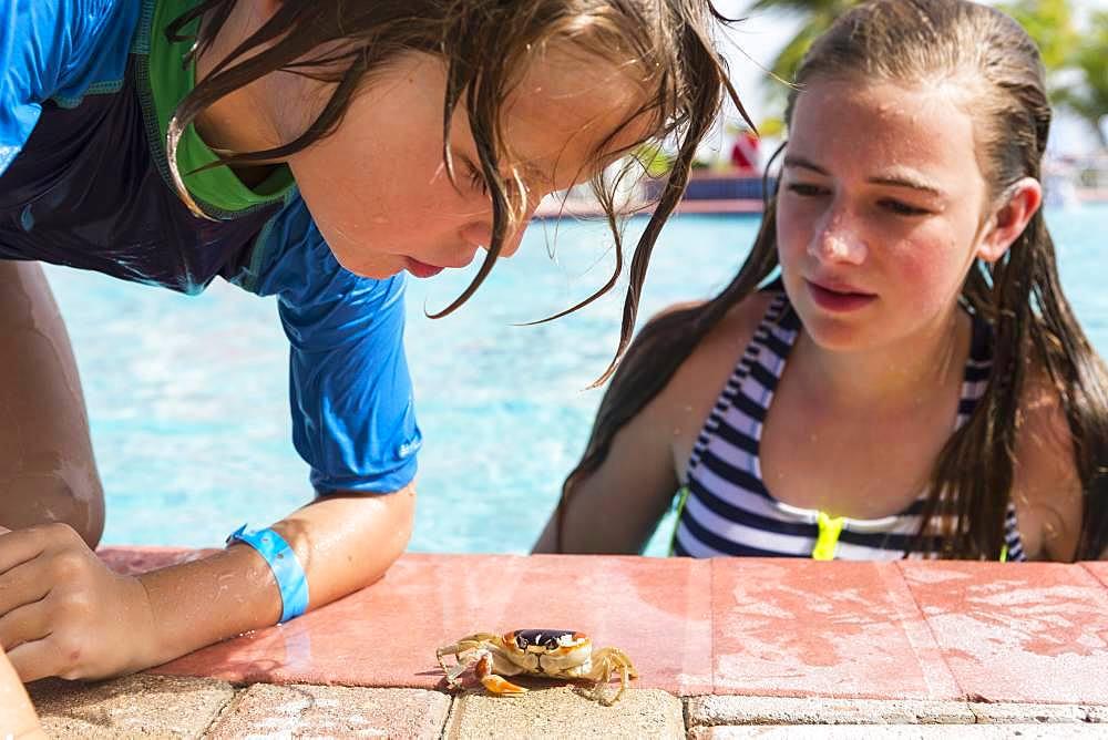 sibling at poolside looking at small crab, Grand Cayman, Cayman Islands