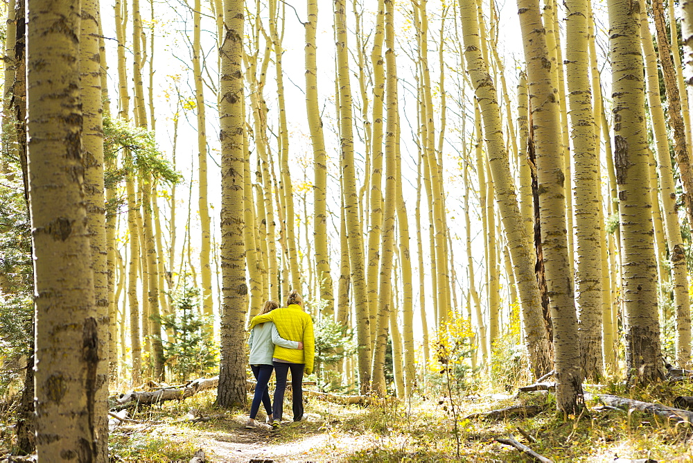 rear view of mother and her teen age daughter hiking in the autumn aspens - 1174-7116