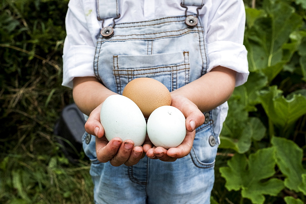 Close up of girl standing outdoor, holding three freshly laid eggs in her hands