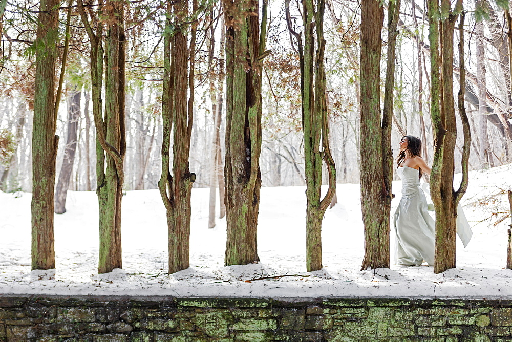 A woman in a ball gown outdoors in the snow, Wallingford, Pennsylvania, USA