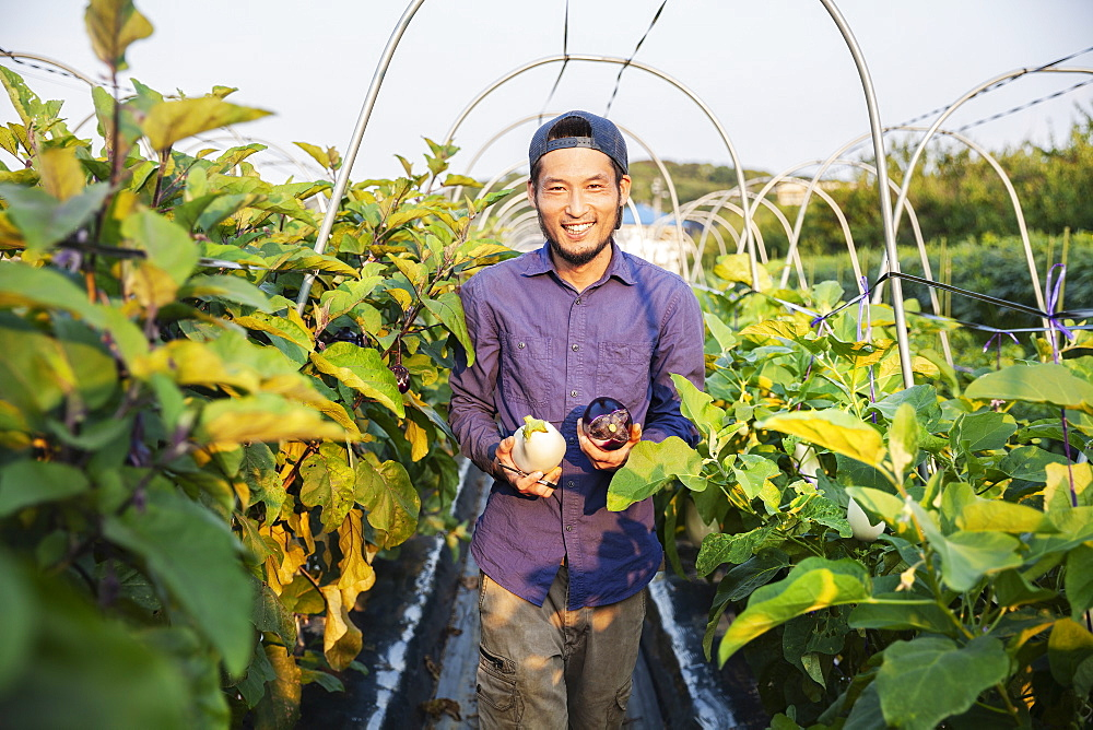 Japanese man wearing cap standing in vegetable field, holding aubergines, smiling at camera, Kyushu, Japan