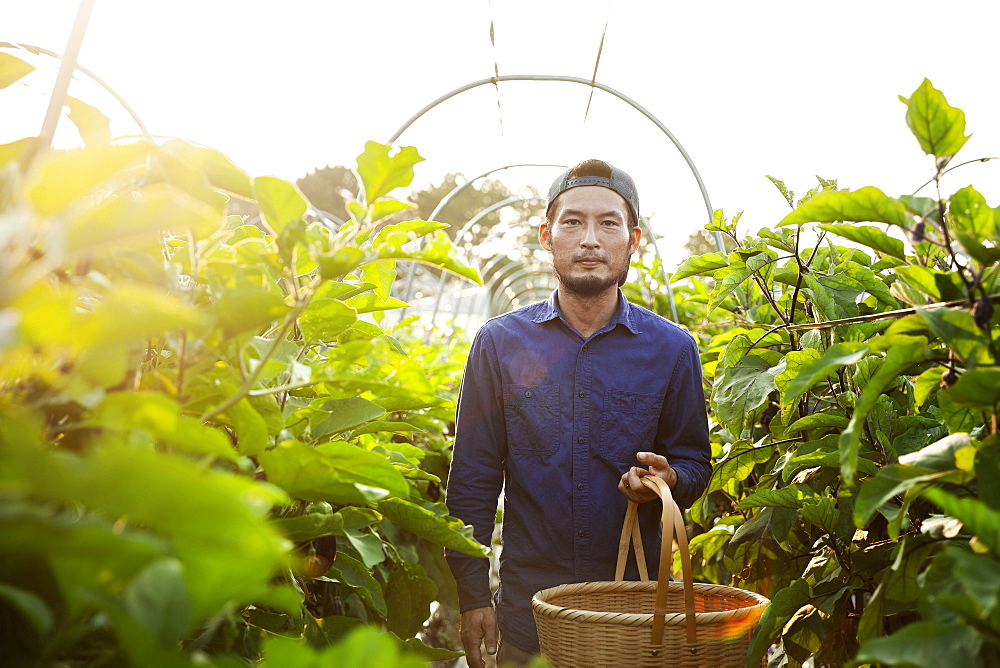 Japanese man wearing cap standing in vegetable field, holding basket, looking at camera, Kyushu, Japan