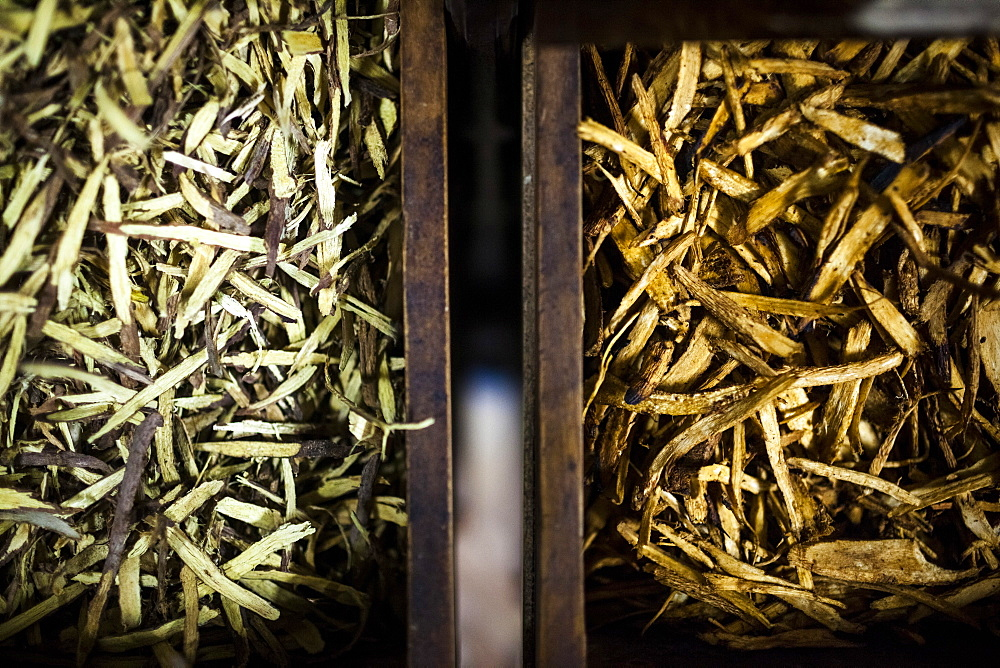 High angle close up of different types of dried roots, used in traditional herbal medicines in cabinets at a family-run pharmacy, Vietnam