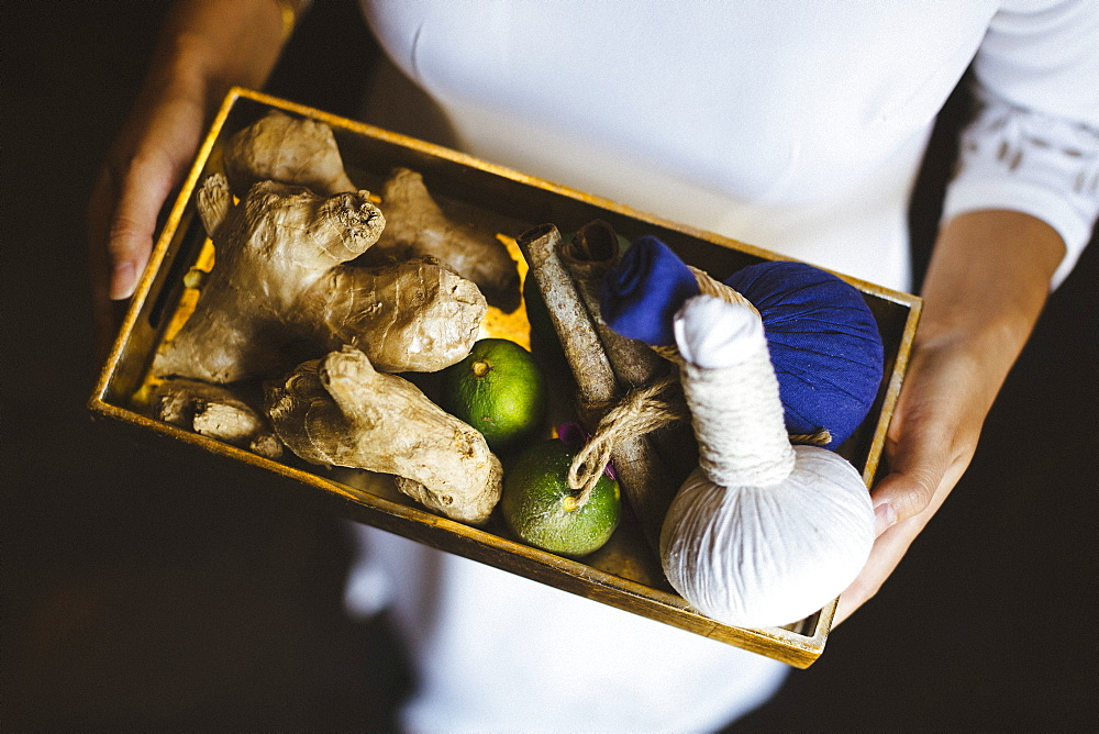 High angle view of person holding tray with fresh ginger and limes and herbal compresses, Vietnam - 1174-7433